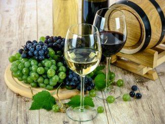 Wine Tourism-Mendoza, Rivers of Wine in Argentina