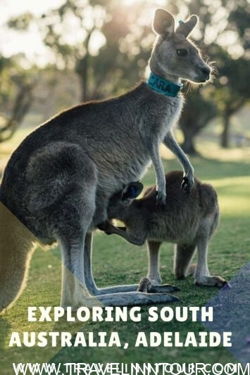 Australia Tourist Attractions-Pin
