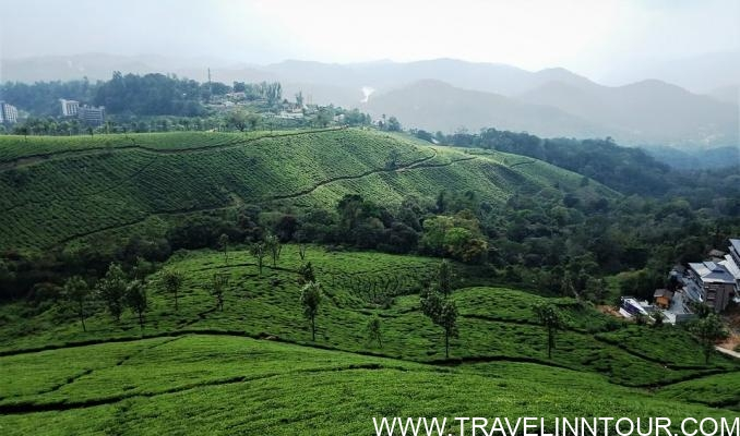 munnar-Tourist Places In Kerala