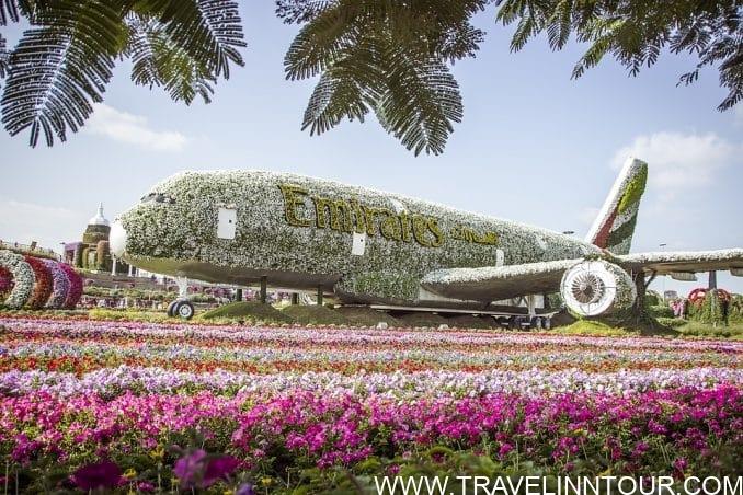 Dubai Miracle Garden - Family Holidays In Dubai