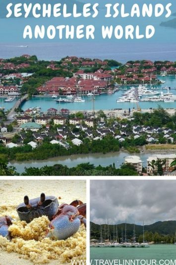 The Seychelles Islands A Perfect Family Holiday Destination