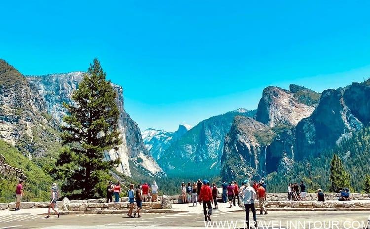 Yosemite Park 1