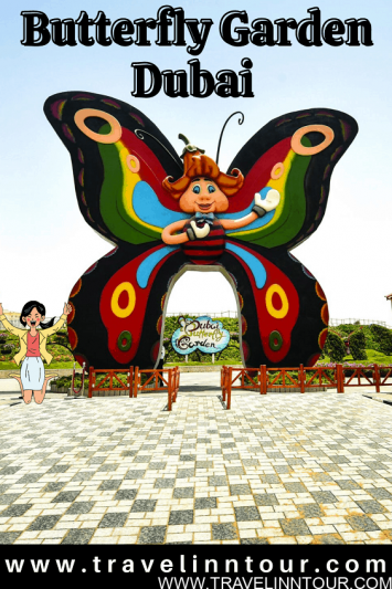 Butterfly Garden Dubai Colorful Butterflies From Around The World