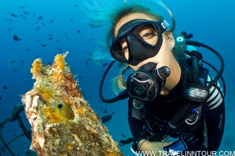 Diving Snorkeling - Vacation In Maldives